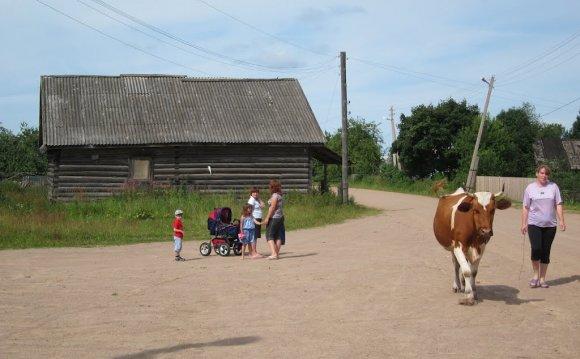 деревня ворошилово