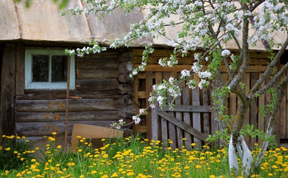 Плюсы и минусы жизни в деревне