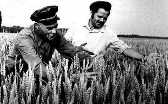 Крестьянин-академик Мальцев